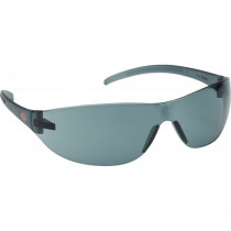 Lunettes de protection Dickies Economical Gris