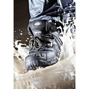 Chaussures de sécurité montantes S3 SRC Medway Dickies