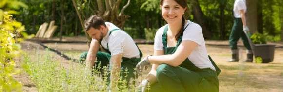 Tenues de travail - Paysagiste / Jardinier